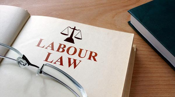 劳动法律事务部